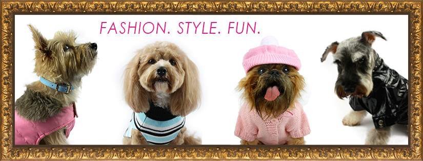CLUB DOGUE FASHION