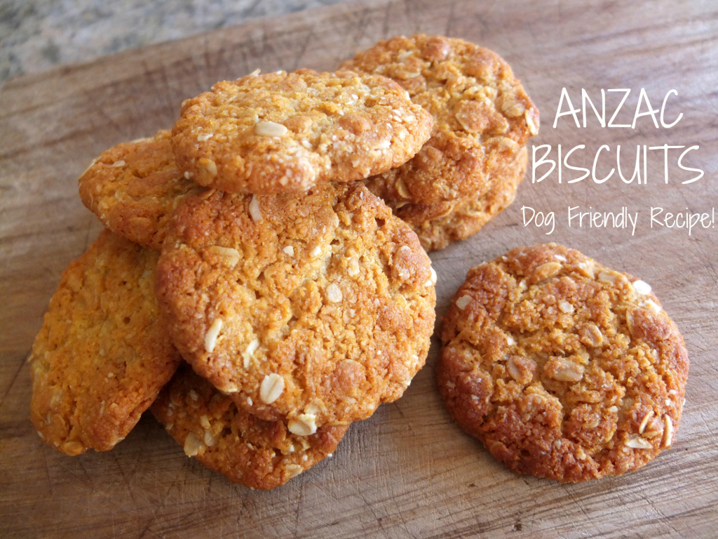 Dog Friendly ANZAC Biscuits