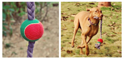 DIY-Outdoor-Dog-Toys-3