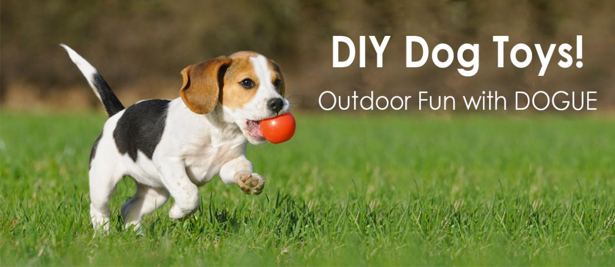 Yard Toys For Dogs : Homemade dog toys for boredom wow