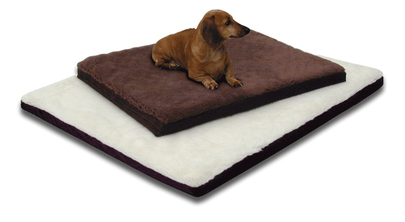 The best dog bed for dogs with arthritis