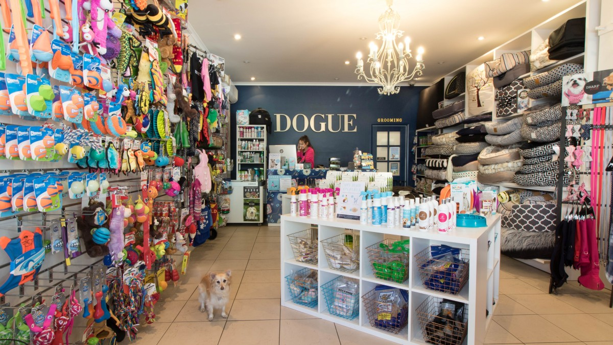 dogue franchise opportunity