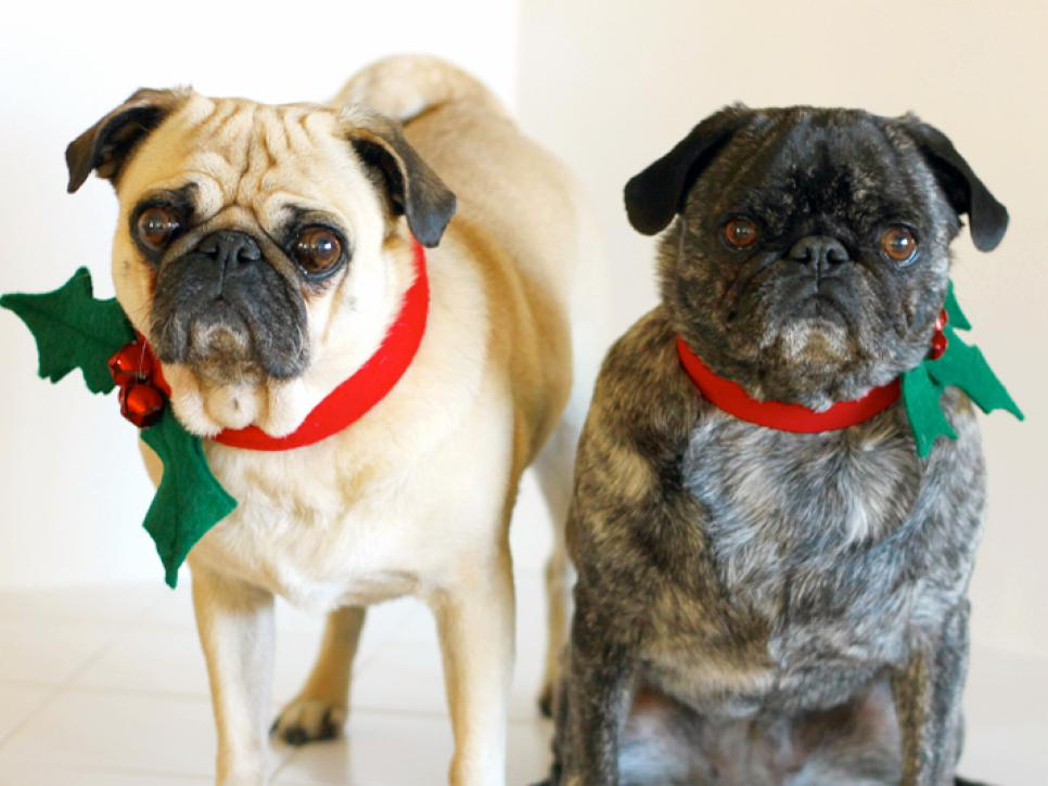 Christmas Dog Collars