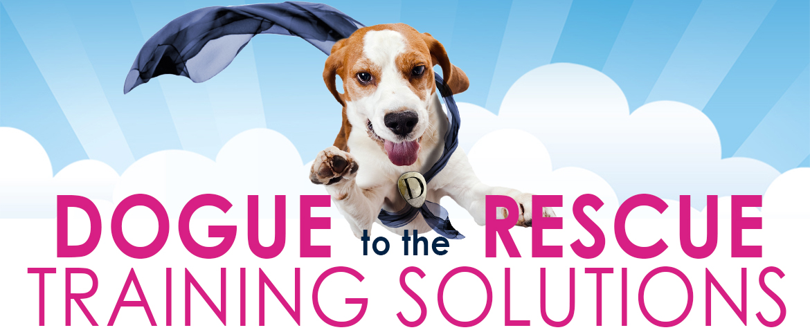 Homepage Banner_dogue to the rescue_brand2