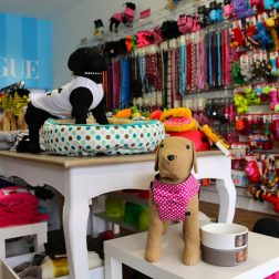 DOGUE Brighton dog boutique
