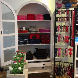 DOGUE brighton retail boutique