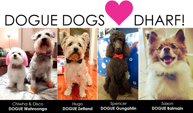 DOGUE Dogs in Dharf