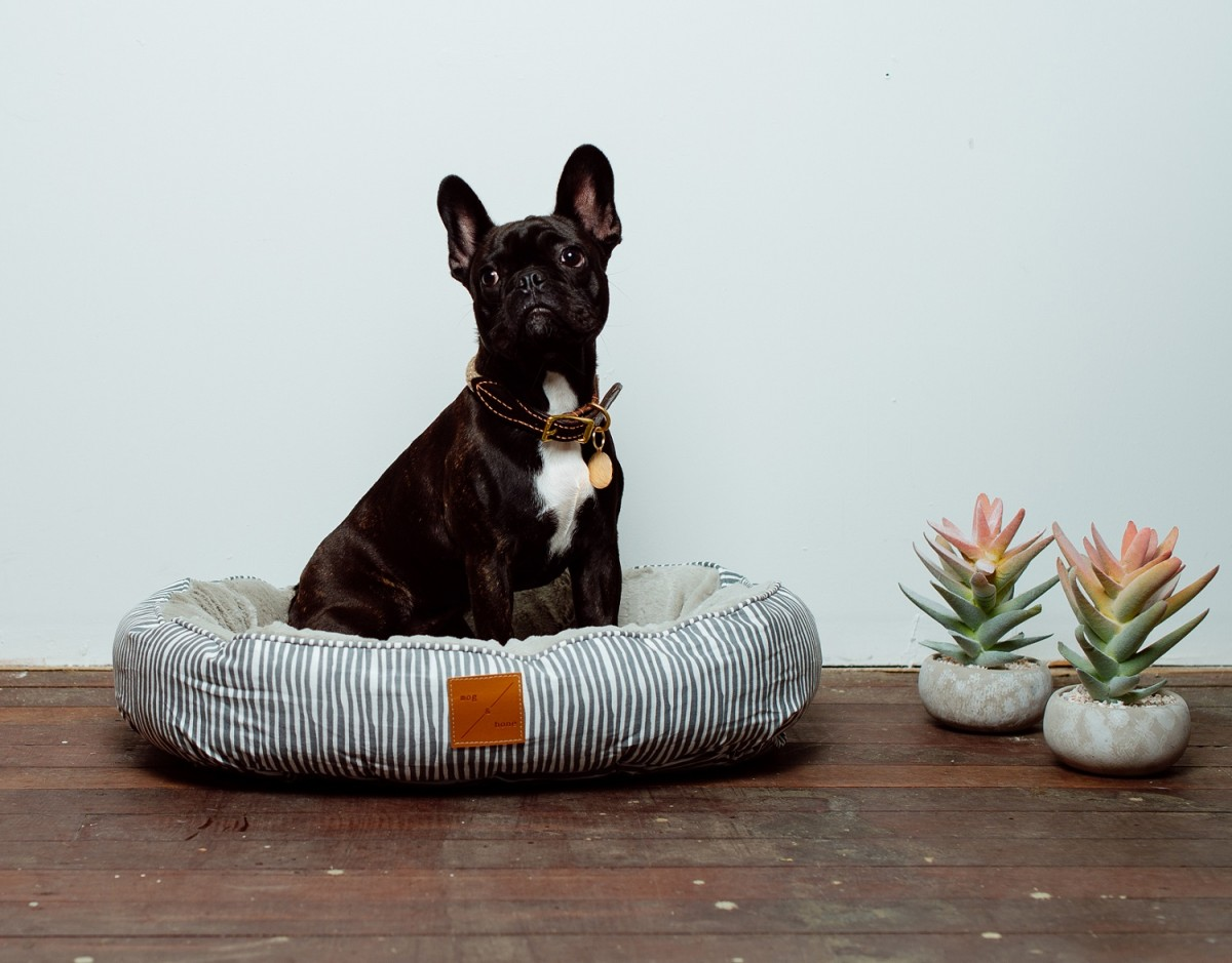 mog and bone grey stripe reversible dog bed