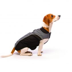 Dog Gone Smart Jacket Nanobreaker