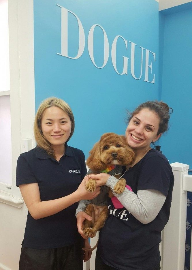 Sustainable Salons Australia Grooming Recycling DOGUE Brighton