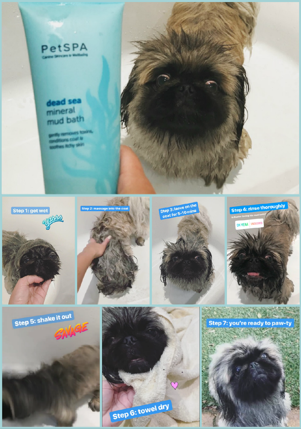 Pet Spa Mineral Mud Treatment